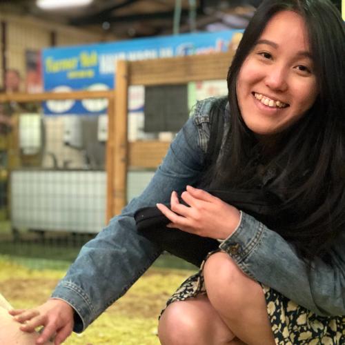 Amanda - Brisbane: Hi! I'm Amanda from Singapore and am curr...