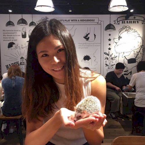 Crystal - Hong Kong: Hello this is Crystal! I am a travel addi...