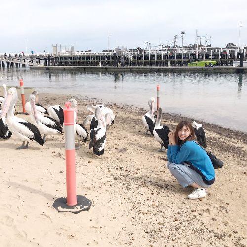 Candice - Chinese / Mandarin Teacher in Melbourne: Hi, my name...