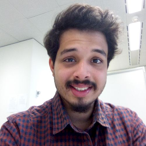 Brandon - Hindi Teacher in Adelaide: Wanting to learn one of t...