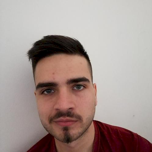 Sándor - Vienna: I am a native Hungarian with a linguistic ba...
