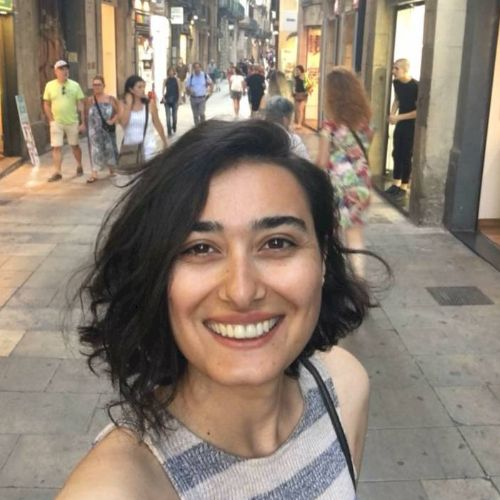 Learn Turkish with a private teacher