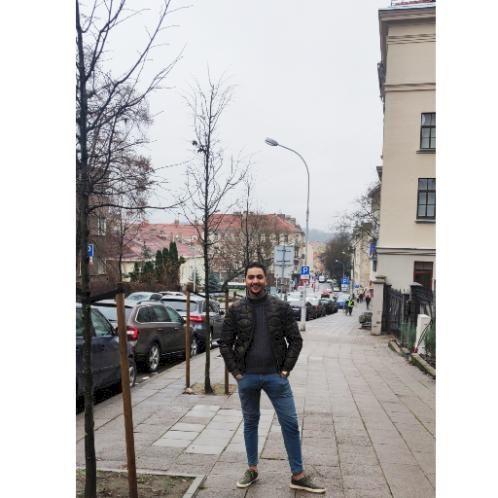 Ziad - Arabic Teacher in Vilnius: I am an Egyptian(where mo sa...